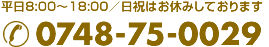 0748-75-0029